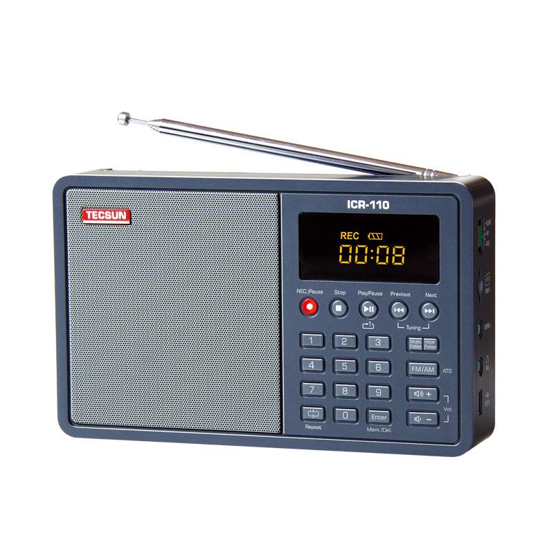 ICR-110